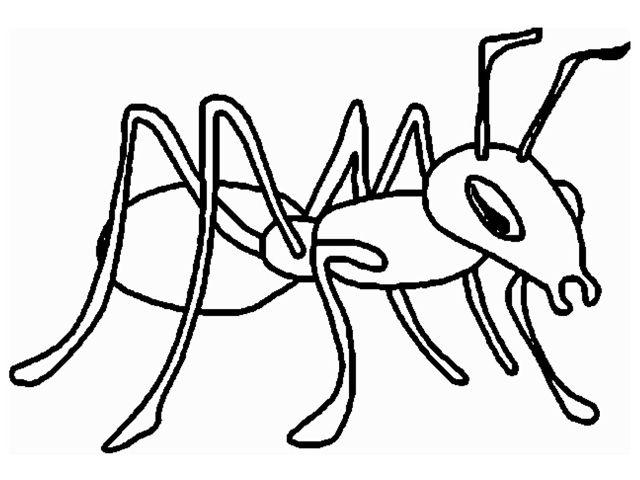 Безобидный муравейчик