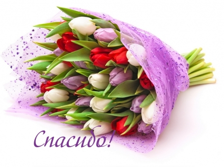 Спасибо за цветы!