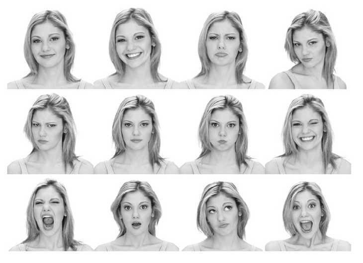 Физиогномика лица и характер схемы и описание