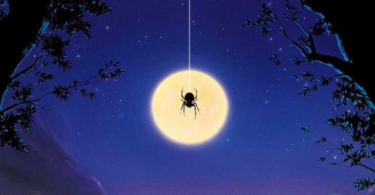Арахнофобия - боязнь пауков, скорпионов и клещей