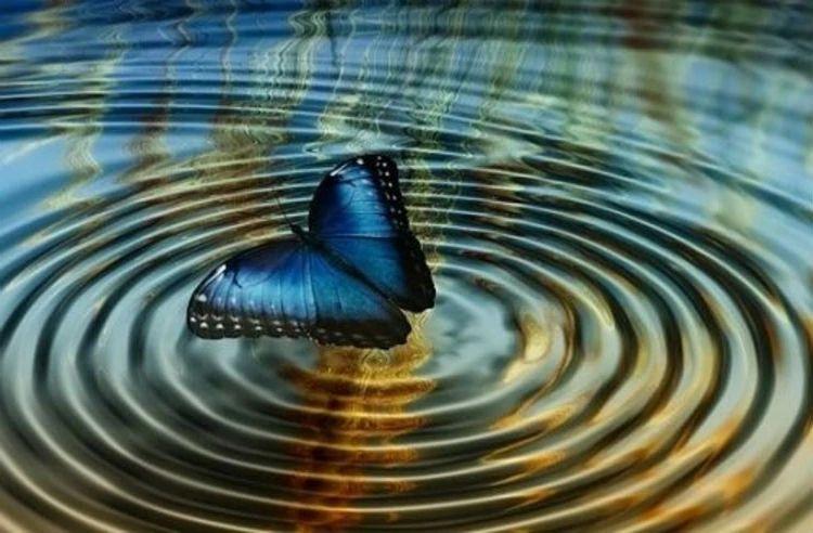 Эффект Бабочки - Что Это?