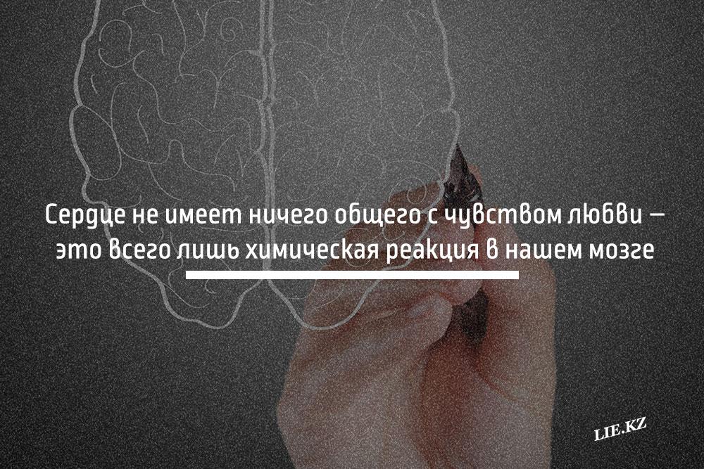 Сердце не имеет ничего общего с чувством любви – это всего лишь химическая реакция в нашем мозге